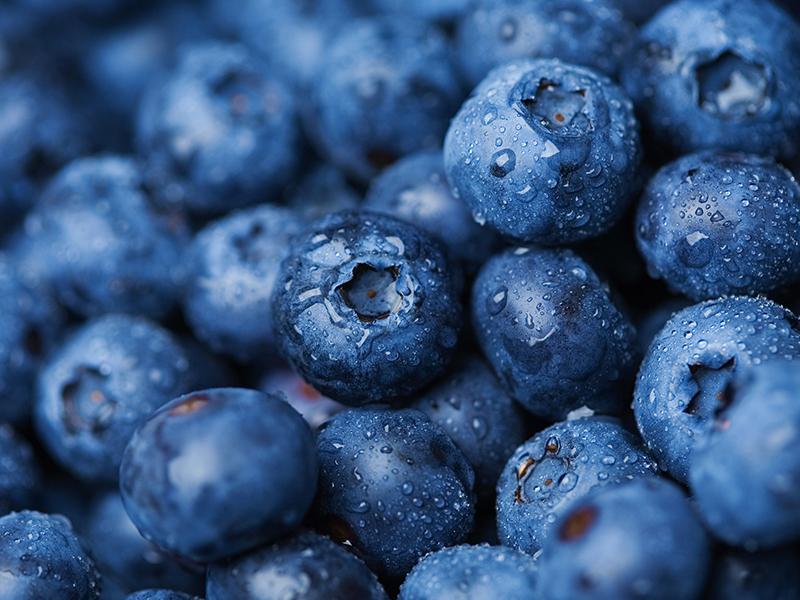 怡顆莓藍莓