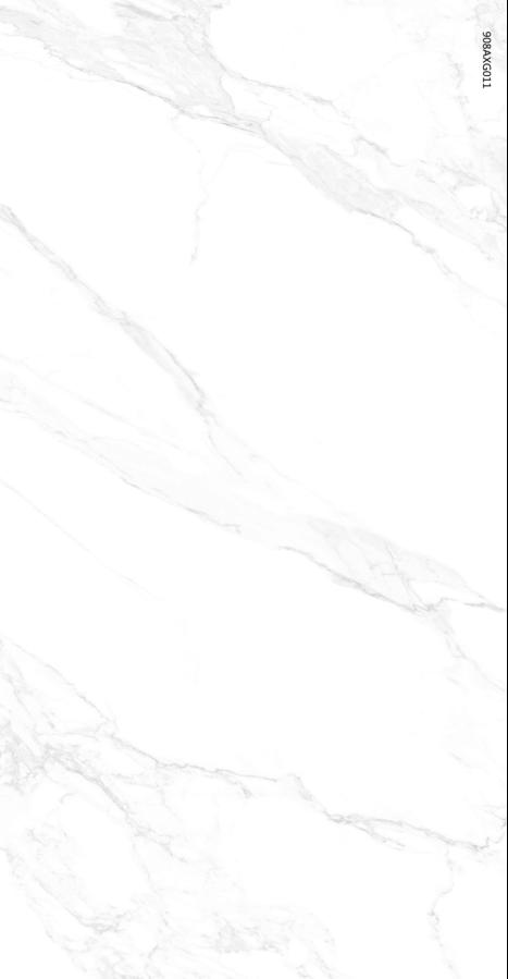 908AXG011