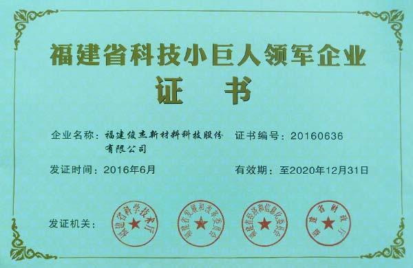 福建省宝马娱乐小巨人领军企业证书