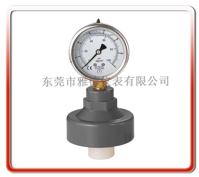 60徑向內螺紋式PP隔膜壓力表