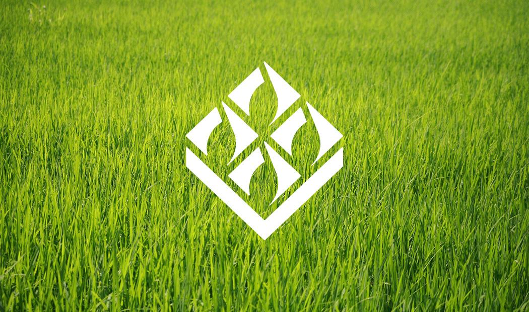 北京粮食集团有限责任公司