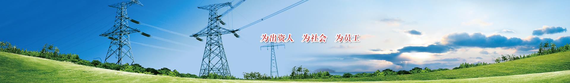 國投欽州發電有限公司