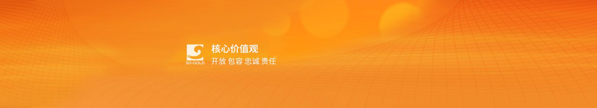 山東省裝飾集團有限公司