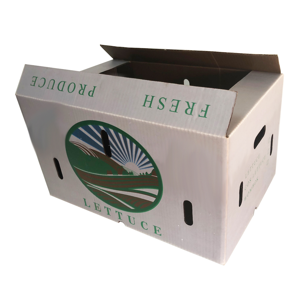 澳洲蔬菜纸箱