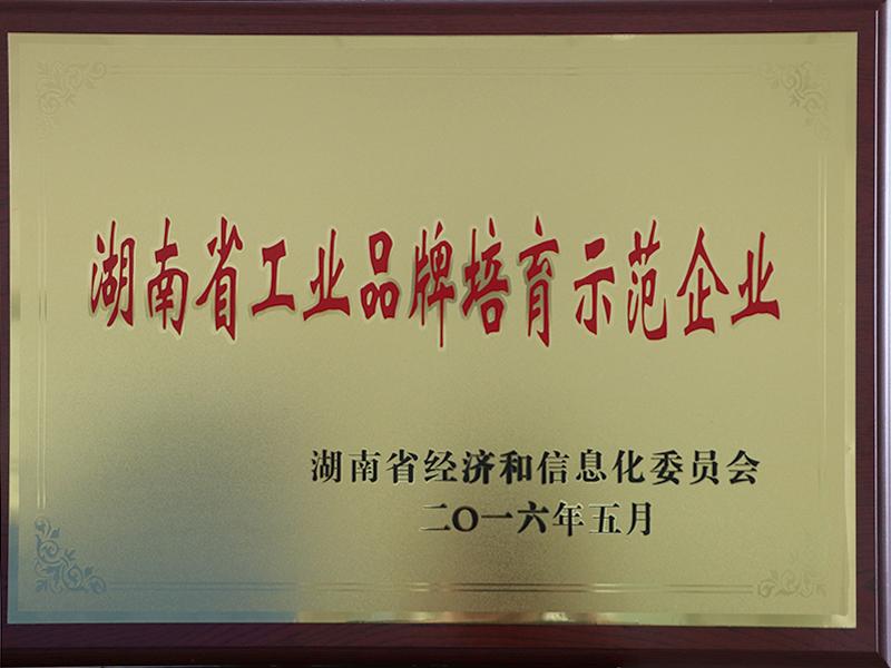 湖南省工業品牌培育示范企業