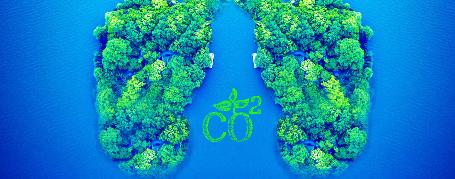 綠色制冷共建節能生態
