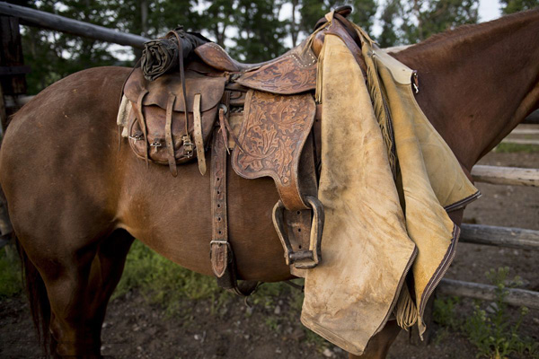 马鞍、马具系列胶