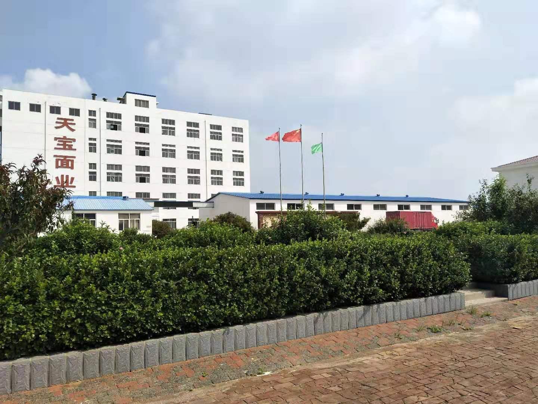 天寶廠區側面圖