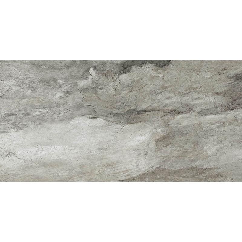 現代木化石