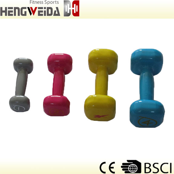 HWD2306A-Dipping Dumbbell