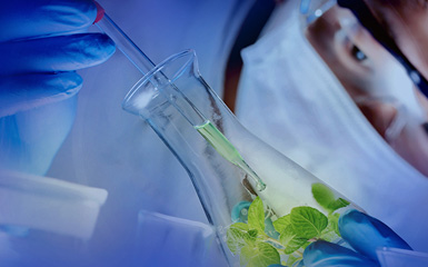 Is green chemistry in the plastic age really something or hype?