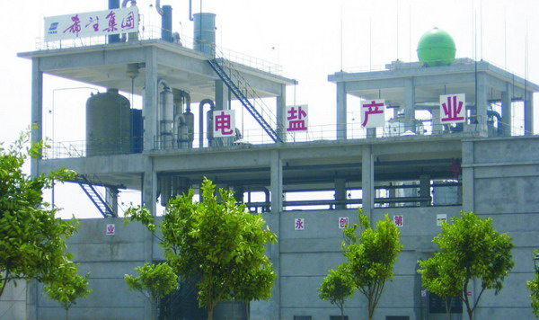 "Sichuan Hope Electric Industry Company officially starts its ""energy-chemical"" industry chain."