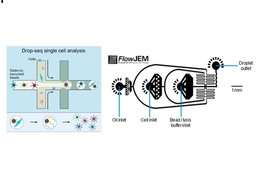Fluigent Drop-seq基因测序系统