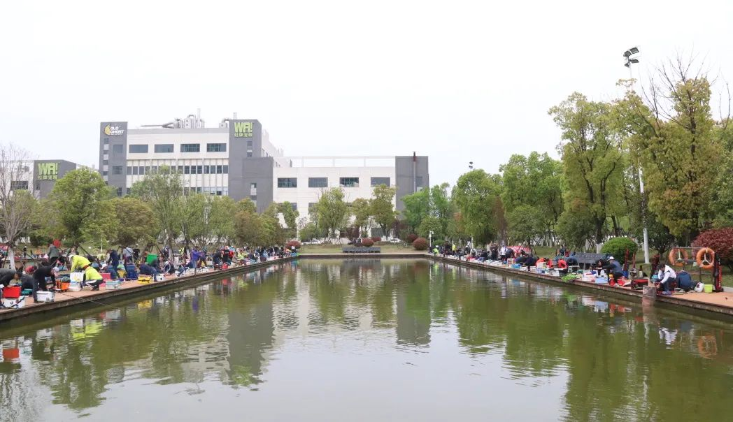 Guangwei Fishing King Cup   Jingchu Earth beats battle drums, and anglers gather to compete for deer
