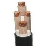 13、铜芯交联聚乙烯绝缘 低烟无卤阻燃护套 电力电缆WDZ YJY