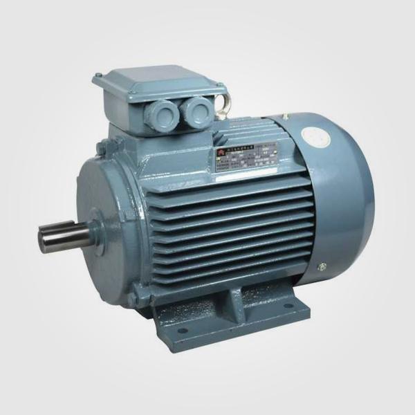 HL系列變頻調速三相異步電動機