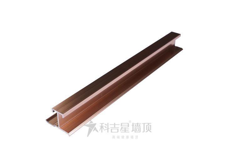 科吉星1003方口工字鋼(淺香檳/啞黑)