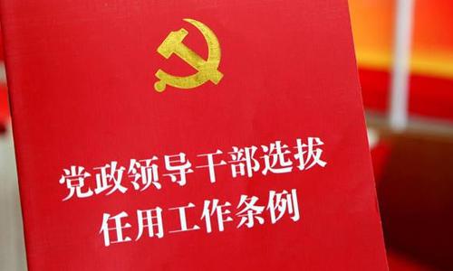 西易村党委组织机构