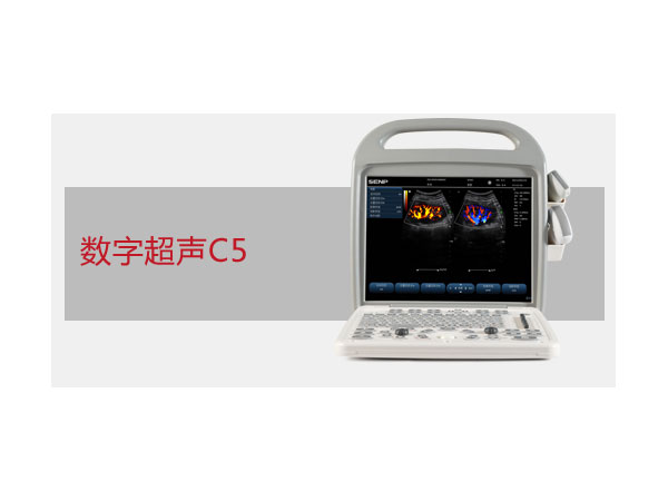 C5便携式彩色超声系统