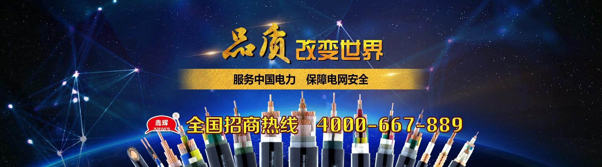 陽穀AG論壇電纜有限公司1