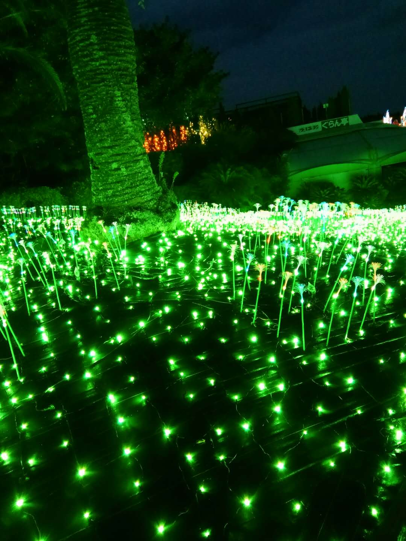日本灯光节