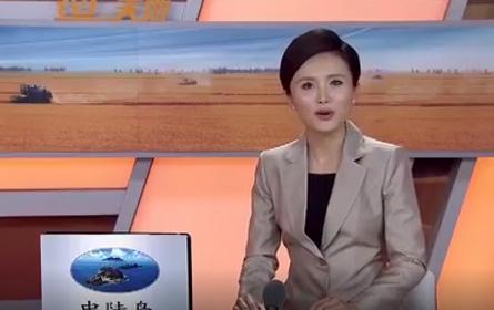 央视7套农广天地-金凤扒鸡的制作