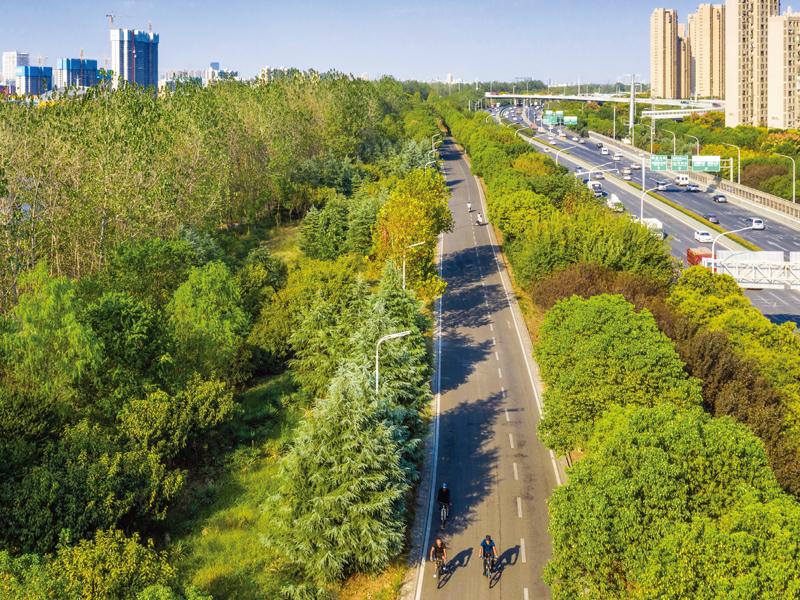 張公堤城市森林公園 一帶——江漢至岱山段