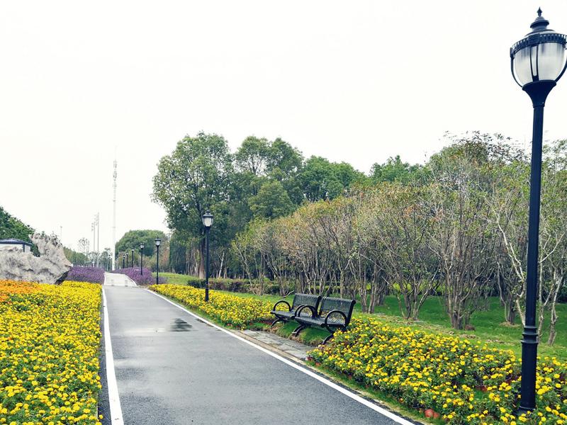武漢金山大道景觀綜合改造