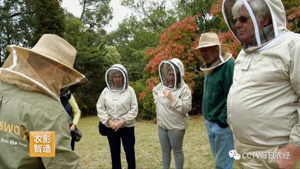 CCTV《每日農經》| 探秘澳大利亞養蜂秘訣(葆春澳洲專題下)