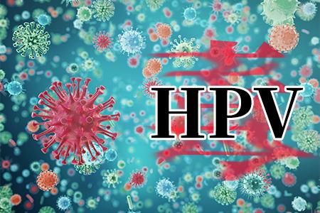 了解HPV