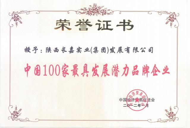 榮譽證書4