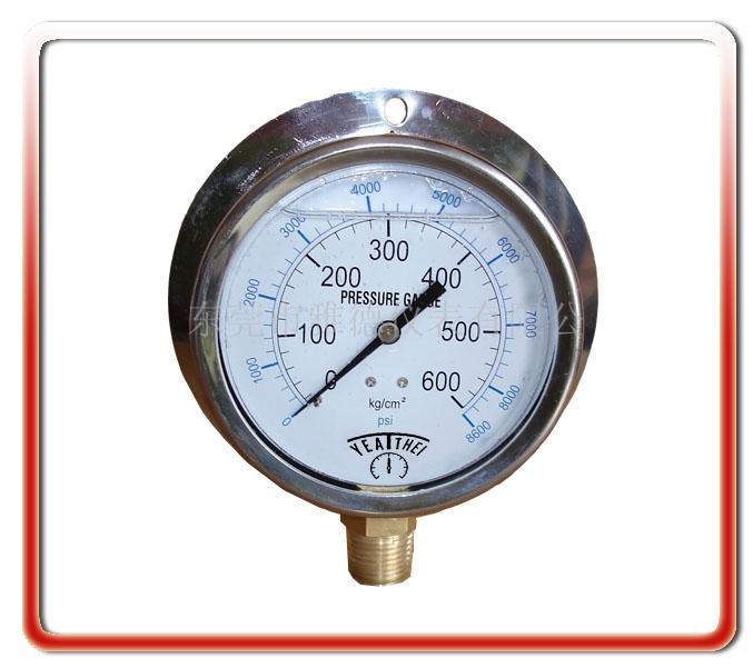 100MM徑向帶后邊油壓表