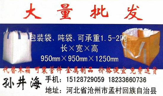 孫井海-孟村噸包廠