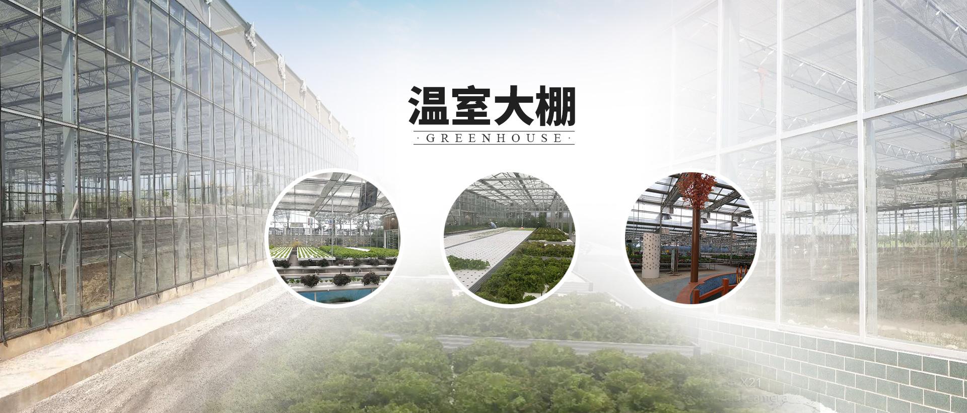 武汉叶动力生物科技股份有限公司