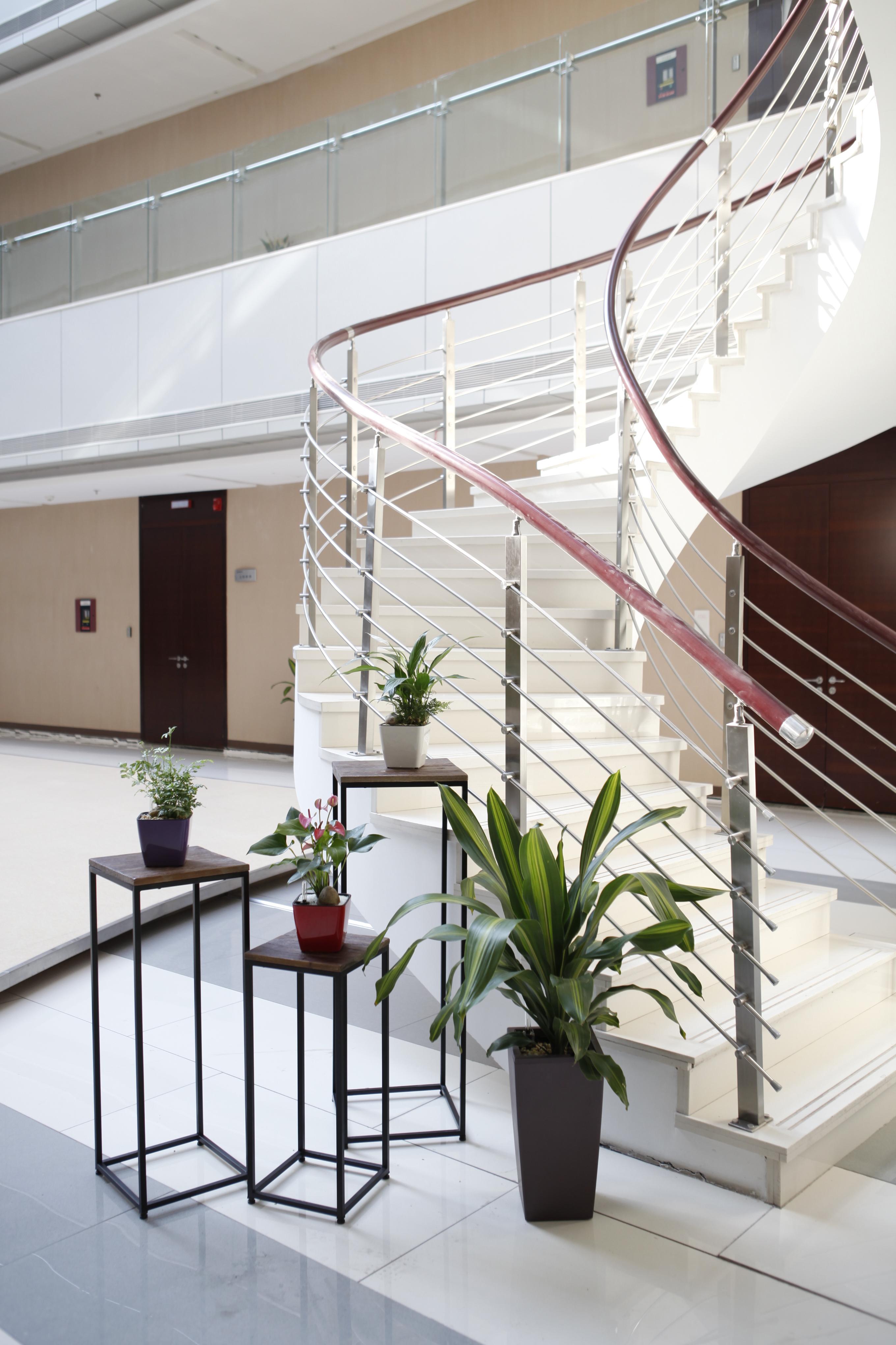 綠植租賃-樂青電廠
