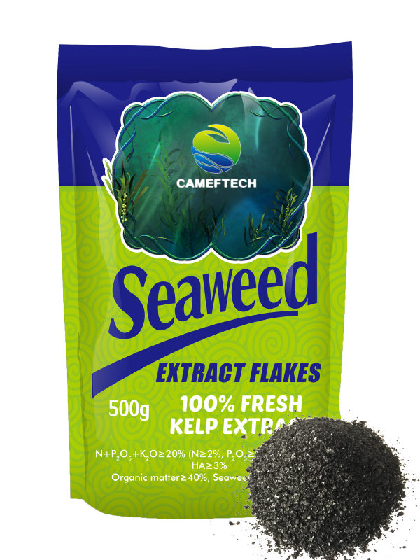 Seaweed Root Growth Promoter