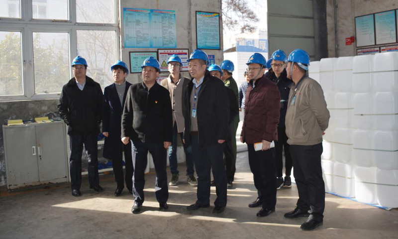 Deputy Secretary of the District Party Committee and District Governor Bai Pinghe and his team visit the company