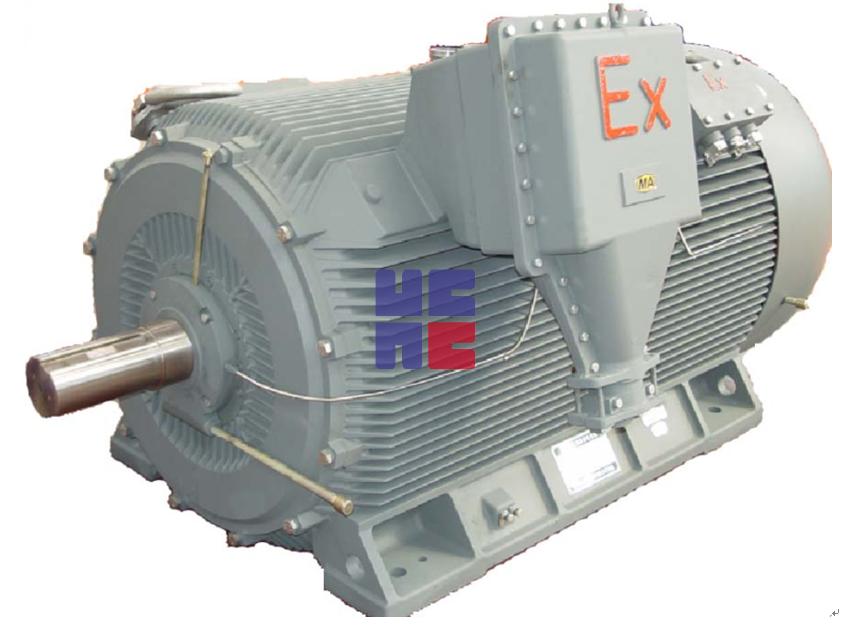 T(B)YCPX系列高效率(隔爆型)高压变频调速永磁式三相同步电动机(H355~H560)