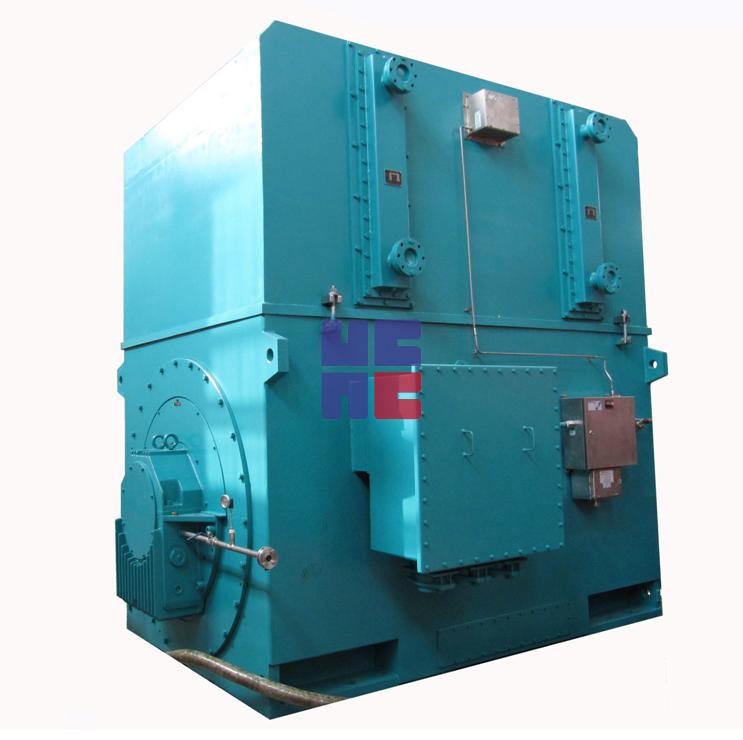 YAKS系列增安型高压三相异步电动机(H355~H1000)