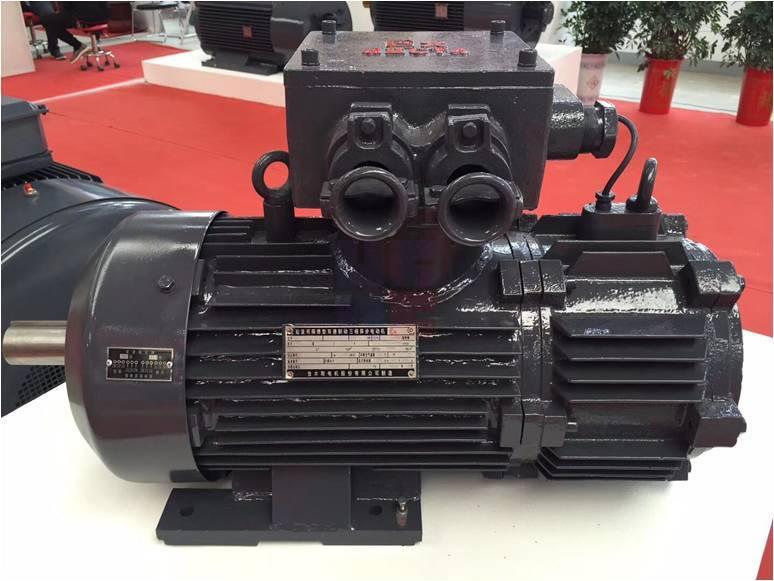 YBZ(S)E系列起重用隔爆型(双速)电磁制动三相异步电动机(机座号112-250)