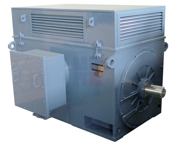 Y系列高压三相异步电动机(H355~H1120)